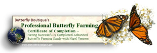 Professional Butterfly Farming Certificate