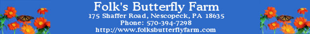 Gold Sponsor: Folk's Butterfly Farm