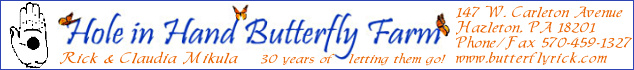Bronze Sponsor: Hole in Hand Butterfly Farm