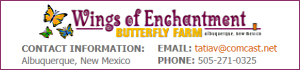 Bronze Sponsor: Wings of Enchantment