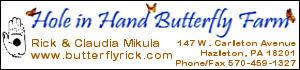 Bronze Sponsor:Hole in Hand Butterfly Farm